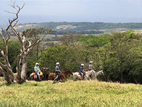Horseback riding in Costa Rica Mountains